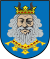 Herb powiatu rypiński